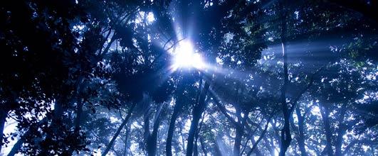 アイキャッチ画像。写真素材サイト PAKUTASO より。